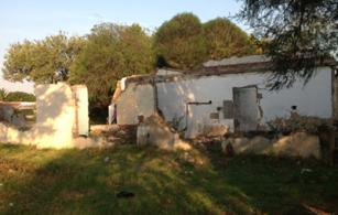 Resurrecting The Ruins